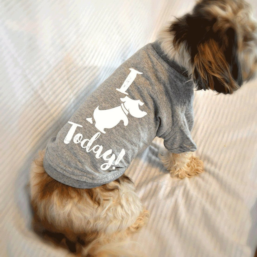I Pooped Today! Cute Dog T-Shirts. Small Pet Clothes. Gift for Dog Lover.