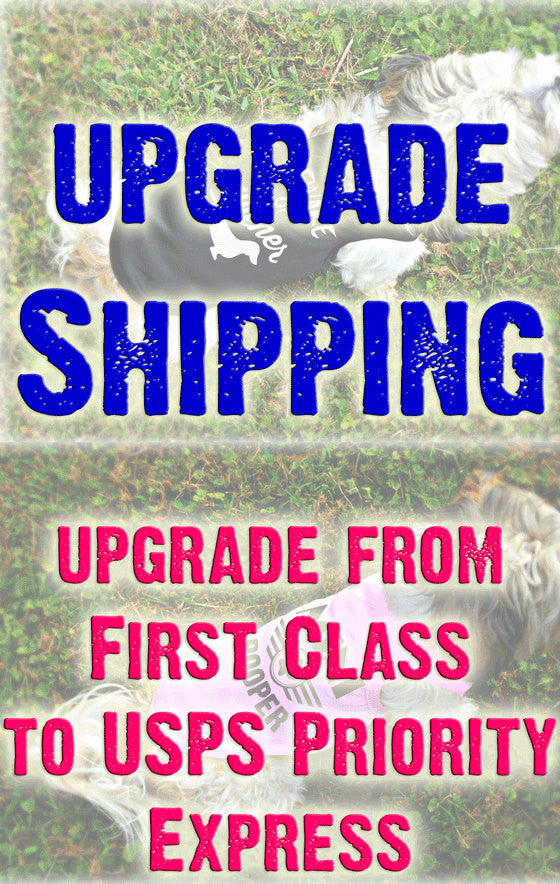 Expedited Shipping - Upgrade from First Class Mail to Express - Ships Out Priority Mail Express - Delivery is 1-2 Day Shipping Speed