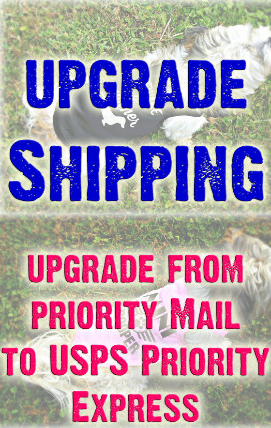 Expedited Shipping - Upgrade from Priority to Express Mail - Delivery is 1-2 Day Shipping Speed
