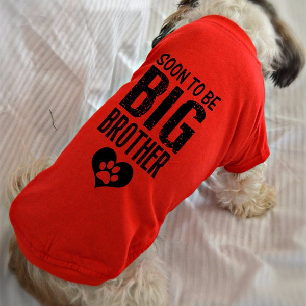 Soon to Be Big Brother Dachshund T-Shirt