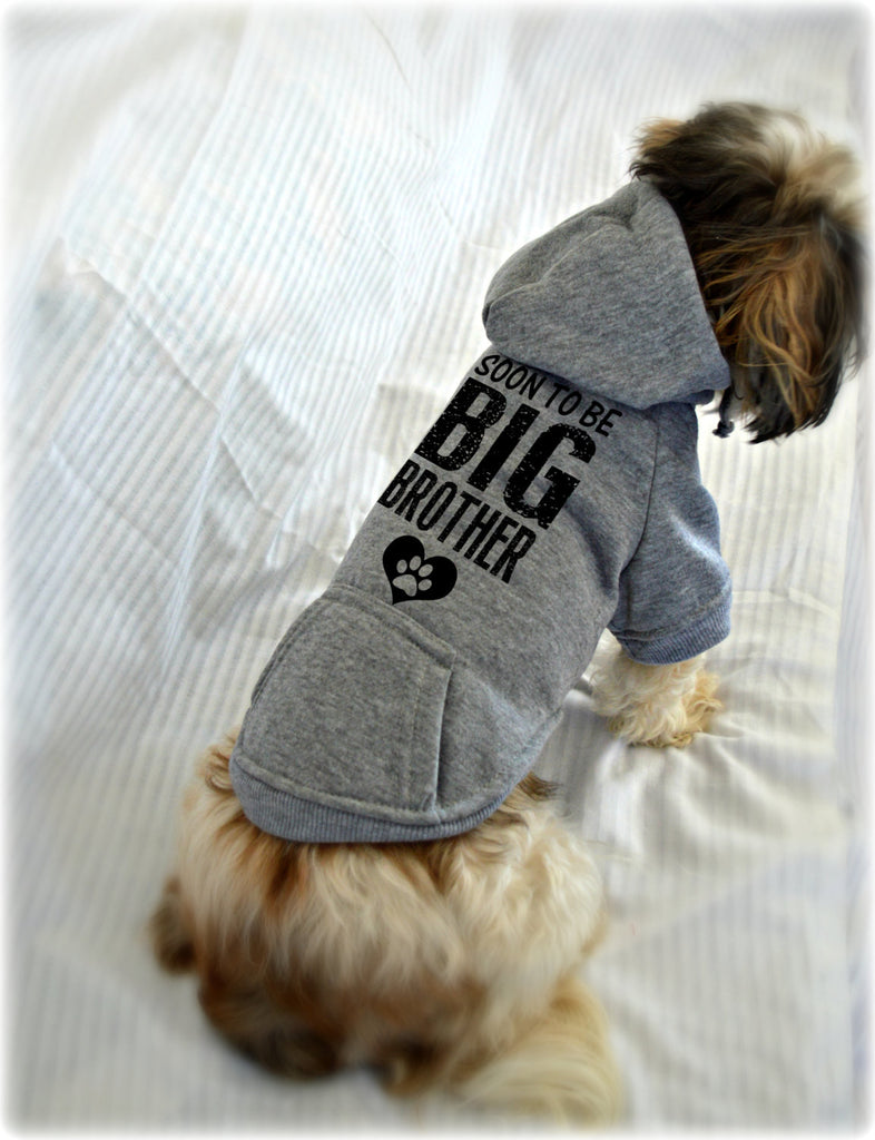 Soon to Be Big Brother Small Dog Sweatshirt