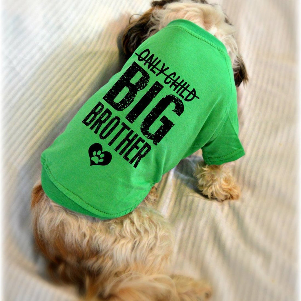 Only Child Big Brother Small Dog T-Shirt