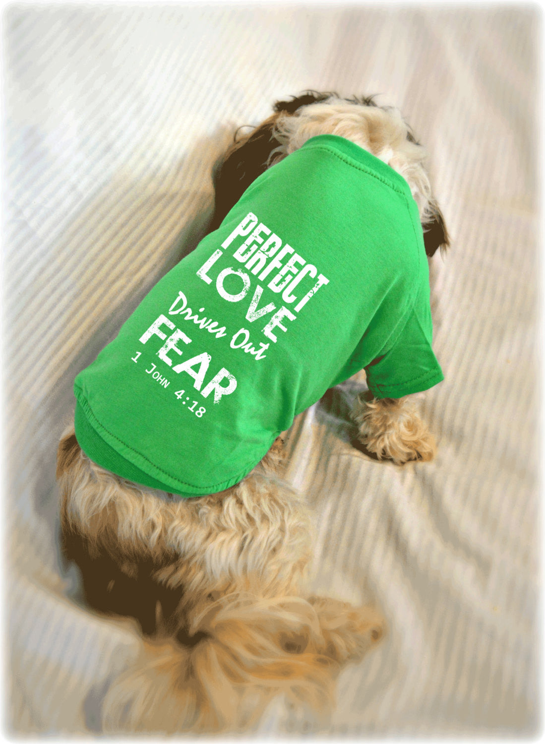 Perfect Love Drives Out Fear 1 John 4:18 Bible Verse Dog T