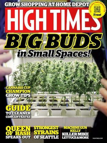 High Times Magazine #444 - January 2013