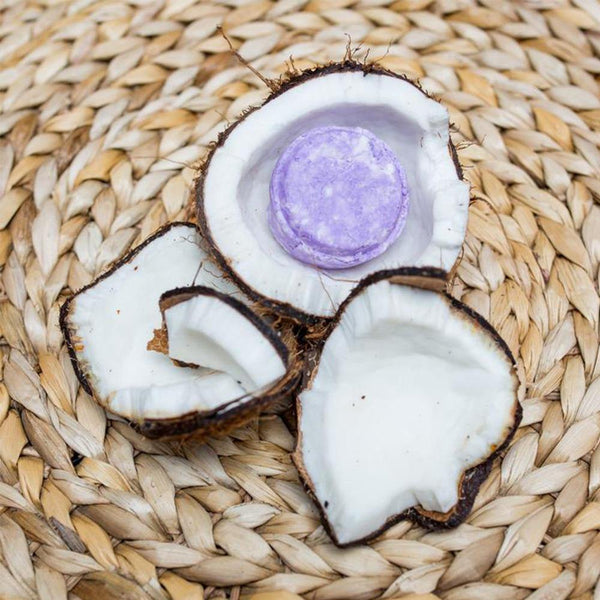 Styled image of a round, light purple shampoo bar sitting inside of a coconut that has been cracked open.