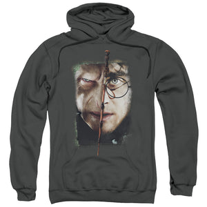 Harry Potter - It All Ends Here Adult Pull Over Hoodie
