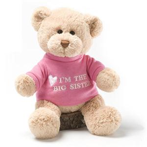 Big Sister T-Shirt Bear