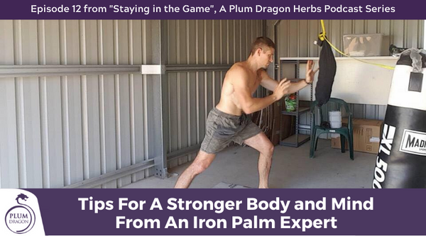 EP12 Tips for a Stronger Body and Mind From an Iron Palm Expert
