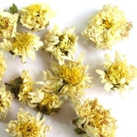 Chrysanthemum Flowers - Wholesale Herbs for Tea - Plum Dragon Herbs