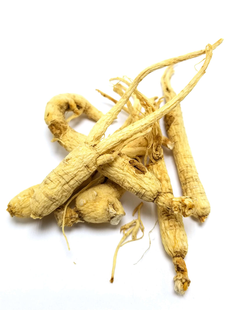 Yi Shan Shen (Wildcrafted Mountain Ginseng)