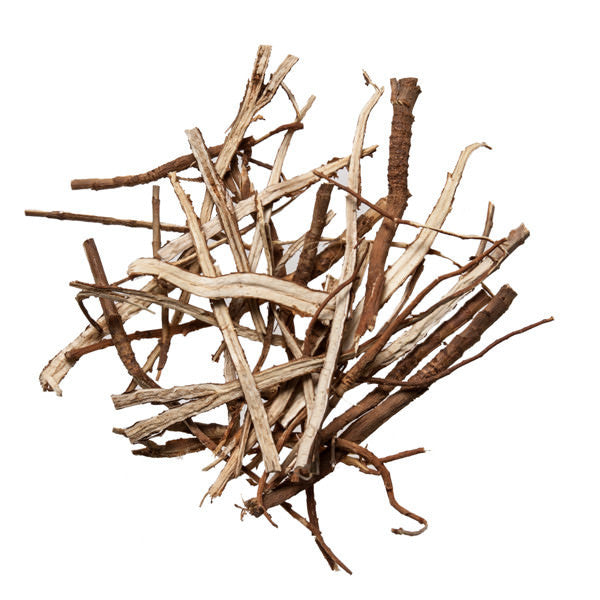 Chai Hu (Thorowax Root; Bupleurum) - Chinese Herbal Remedy - Plum Dragon