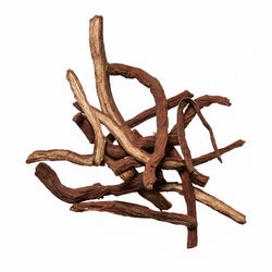 Dan Shen (Salvia Root) - Best Chinese Herbal Remedies - Plum Dragon Herbs