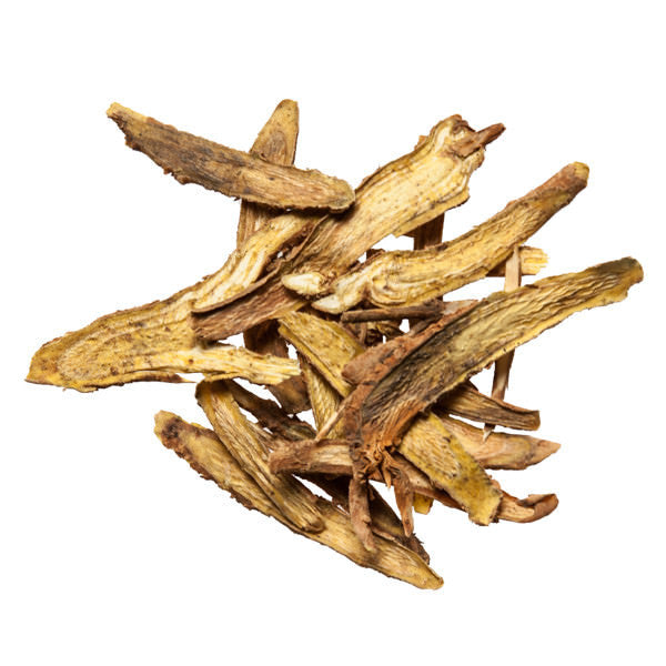 Huang Qin (Skullcap Root) - Bulk Chinese Herb Supplier - Plum Dragon