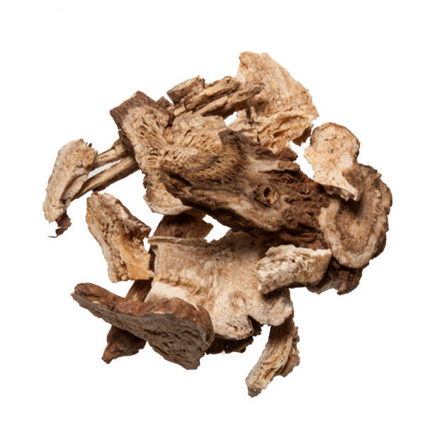 Bai Zhu (White Atractylodes) - Chinese Medicinal Herbs for Acupuncture
