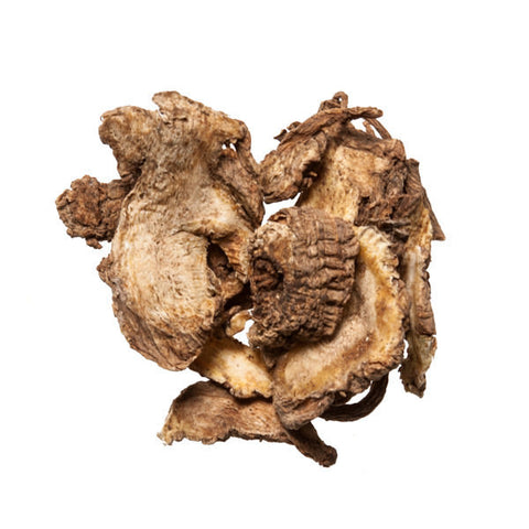 Du Huo (Pubescent Angelica Root) - Chinese Herbs and Dit Da Jow