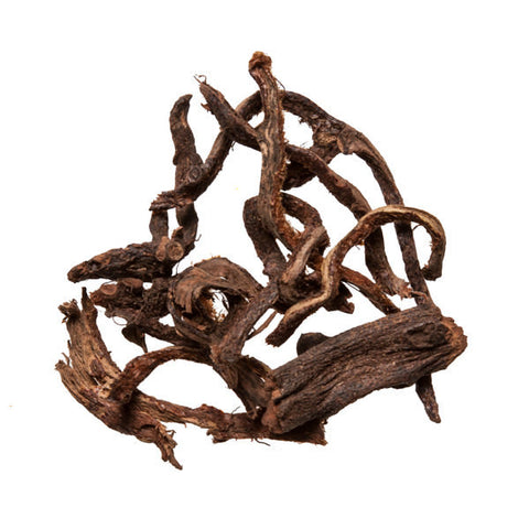 Gu Sui Bu (Drynaria) - Chinese Herb for Acupuncture and Dit Da Jow