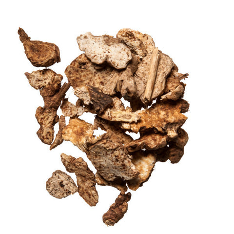 Cang Zhu (Atractylodes) - Quality Chinese Herbs for Acupuncture and TCM