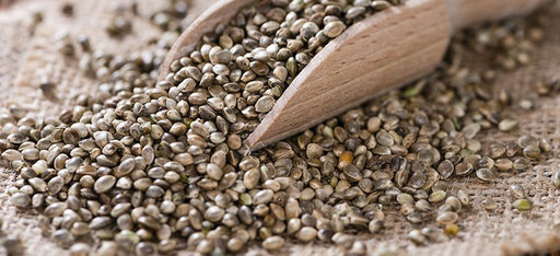 Organic Australian Hemp Seed ($ per 100g)-Bulk Food-Eco Warehouse Aus