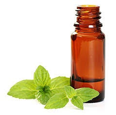 Love Me Essential Oil Blend - Mint Mojito