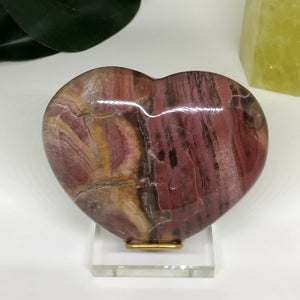 Petrified Wood Heart PWH104