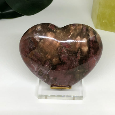Petrified Wood Heart PWH105