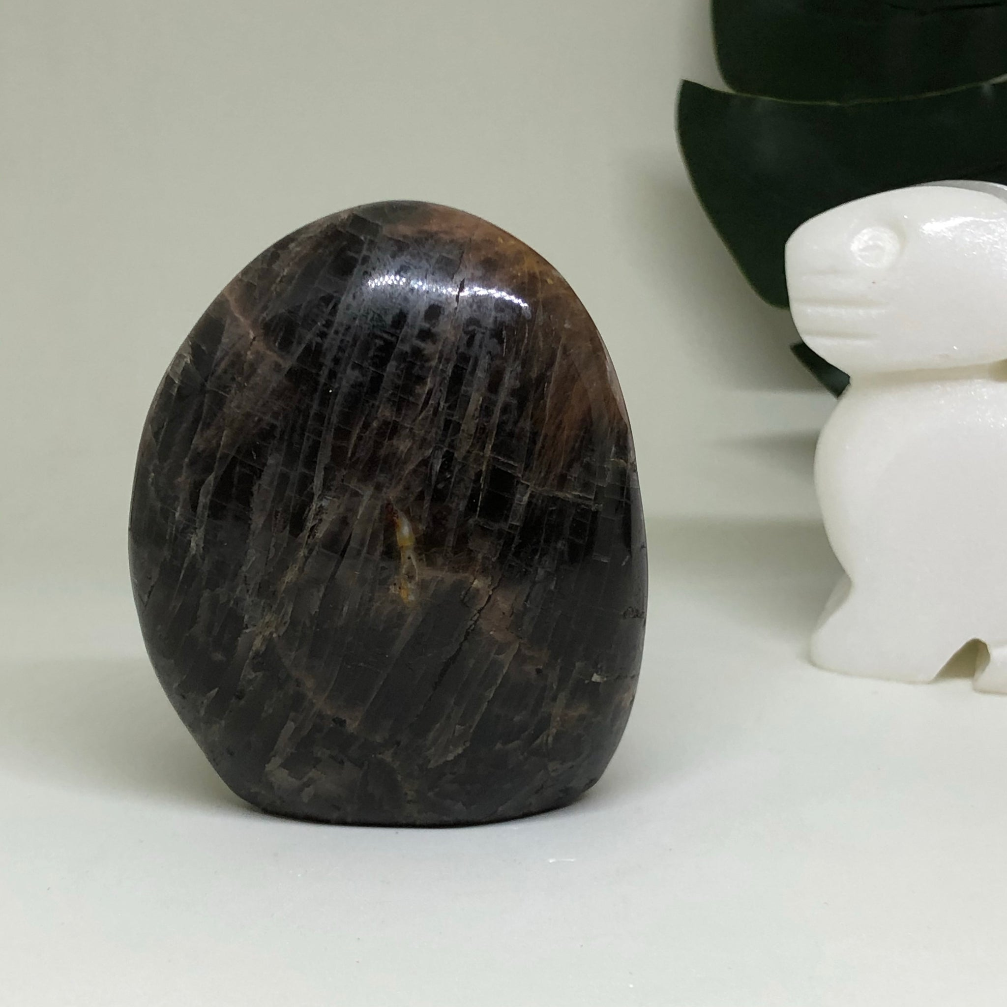 Black Moonstone Free Form BMFF02