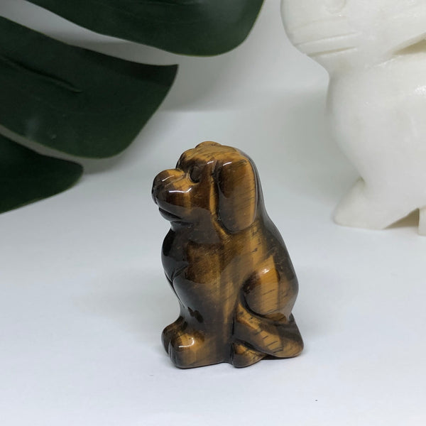 Tiger Eye Dog - D103