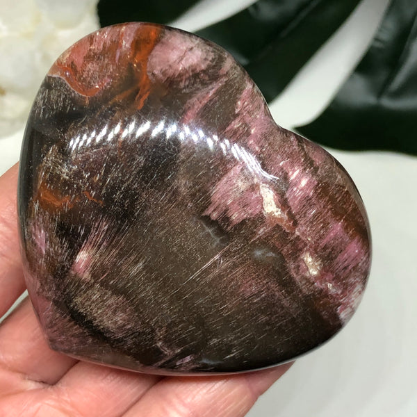 Petrified Wood Heart PWH102