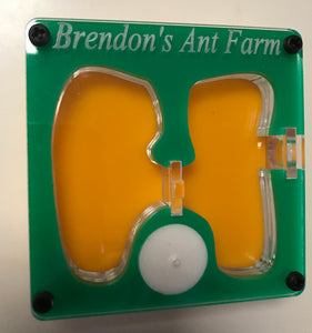 Ant Farm Personalized