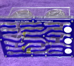 Ant Farm Large with 5 gates and 3 super soaker sponges. BONUS $55 Outworld.