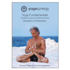 Yoga Synergy | Yoga Fundamentals Meditation and Relaxation | DVD