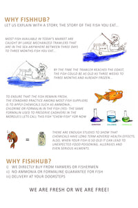 Fishhub - We are fresh or we are free | | Buy Fresh Fish in Abu Dhabi