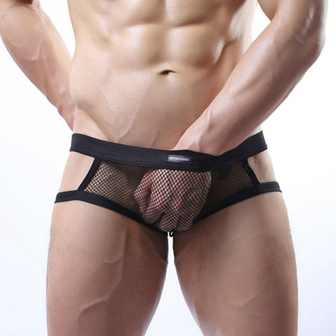 Mens Mesh See Through Penis Pouch Thongs G-strings