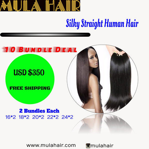 10 Bundles Silky Straight Human Hair 16,18,20,22,24  Brazilian, Malaysian, Peruvian & Indian - Mula Hair