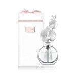 Christina's Creative Artistries' Chando Fantasy Enchanted Wild Orchid diffuser image.  Features a flat-faced,  round clear glass bottle on a glass base, double white orchid porcelain flowers and bud on a porcelain stem that doubles as the diffuser when inserted in the bottle, beautiful packaging with a pink bow, a 100 ml bottle of wild orchid fragrance and a small funnel used for pouring the fragrance into the bottle.  Fragrance emits through tiny pores on the porcelain flowers.