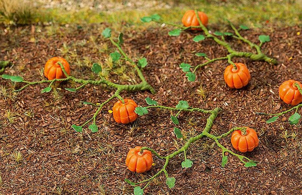 Faller 181258 Pumpkins Model Railway Accessories - SGS Model Store