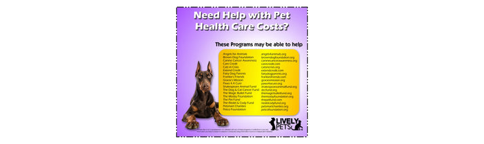 Pet Health Finances