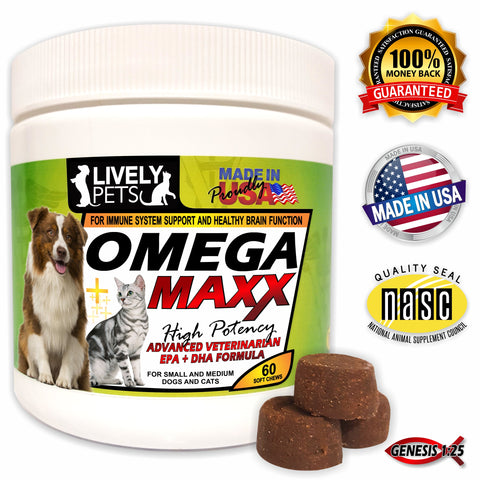 Dog breeds fish oil for dogs dog vitamins treats healthy fish oil for dogs dog omega 3 healthy dog lively pets dog treats