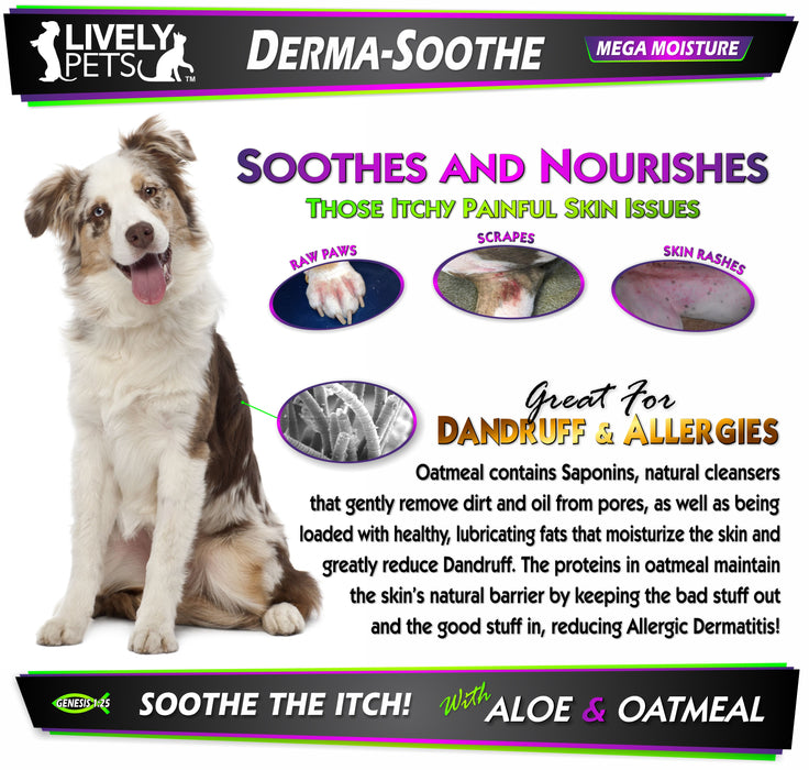 #1 Best Derma-Soothe Aloe & Oatmeal Moisturizing Shampoo for Dogs and Cats 16 oz