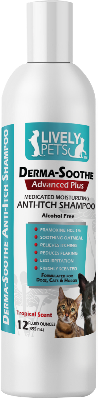 Derma-Soothe Advanced Plus Anti-Itch Pramoxine Shampoo for Dogs Cats and Horses 12 oz | 1 Case (Qty 12) - LIVELY PETS ONLINE