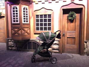 Magic Kingdom stroller