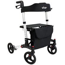 Premium Walker Rental - THEME PARK APPROVED