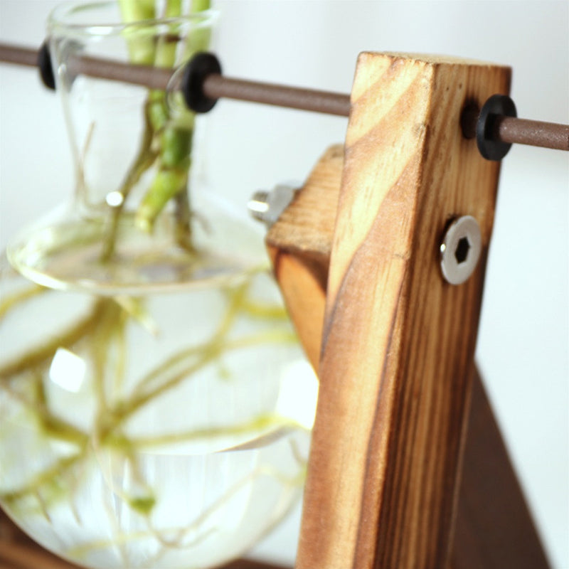 Vintage Transparent Plant Vase with Wooden Frame