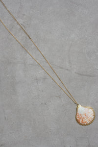 AMBER SCEATS Imogen Necklace Seashell
