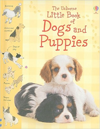 Usborne Little Book of Dogs and Puppies