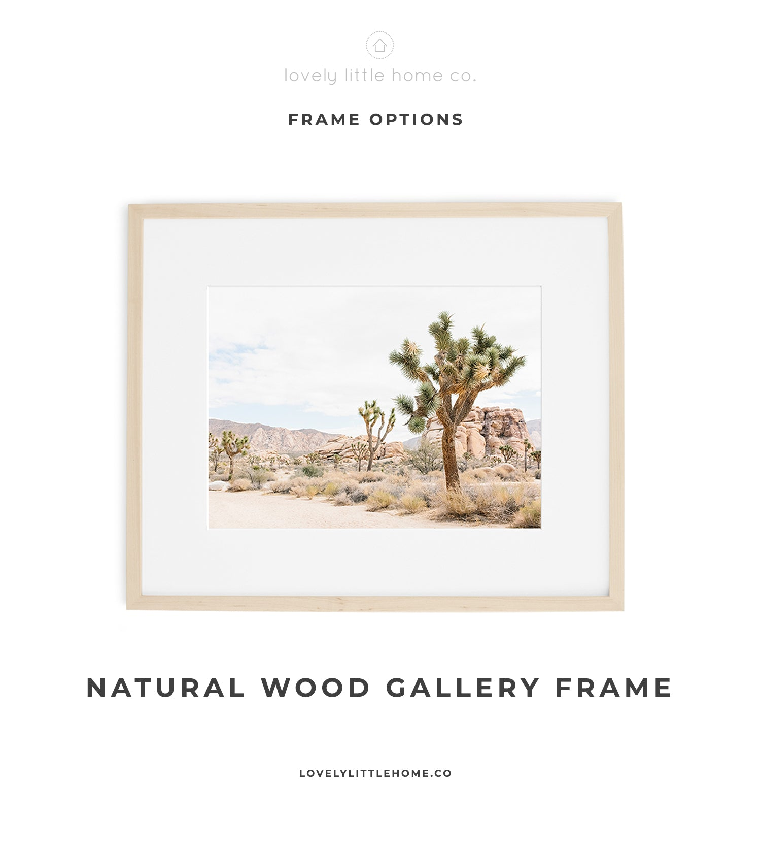 joshua tree framed desert wall art print photo