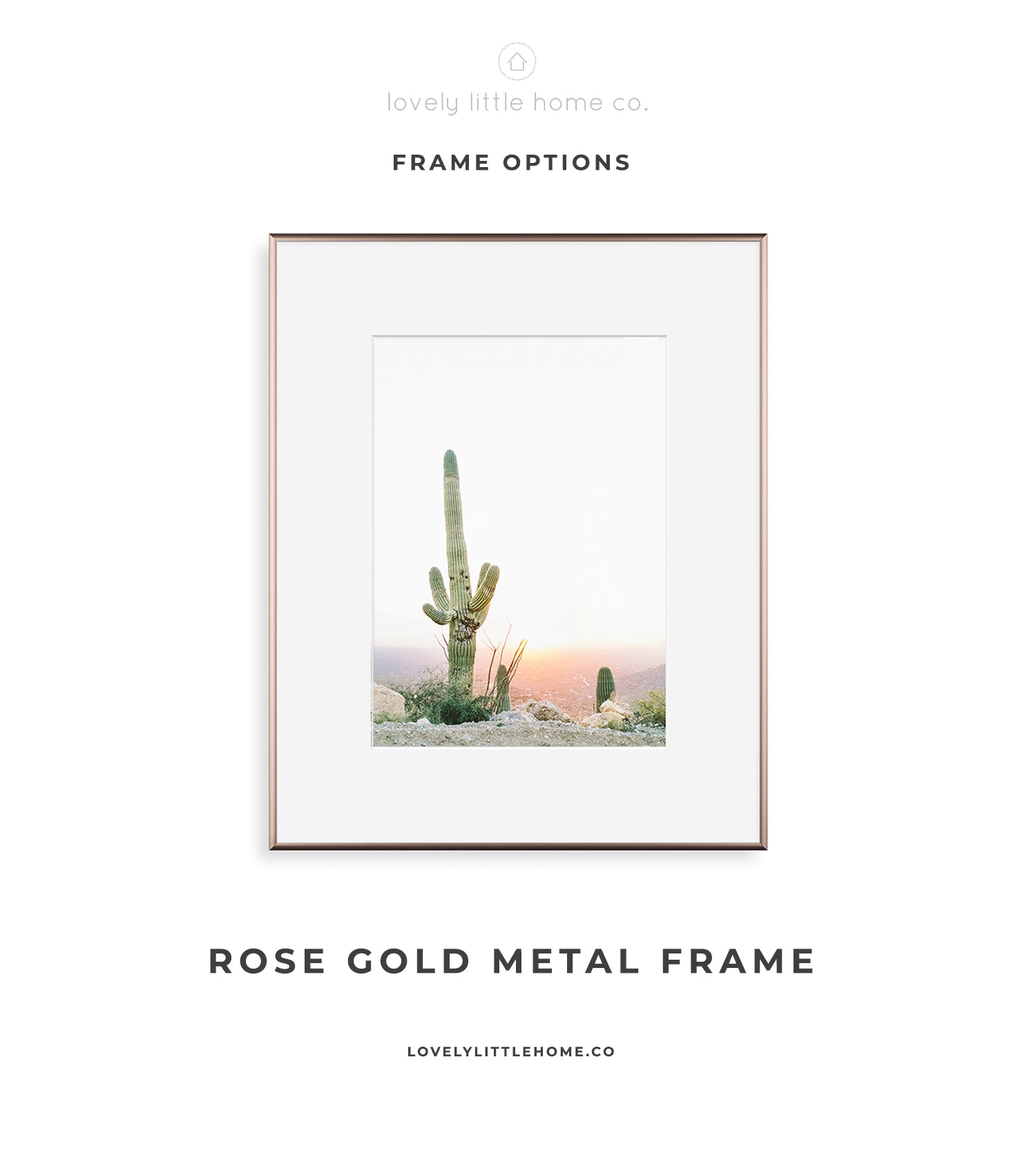 rose gold minimalist gallery wall frame home decor photo