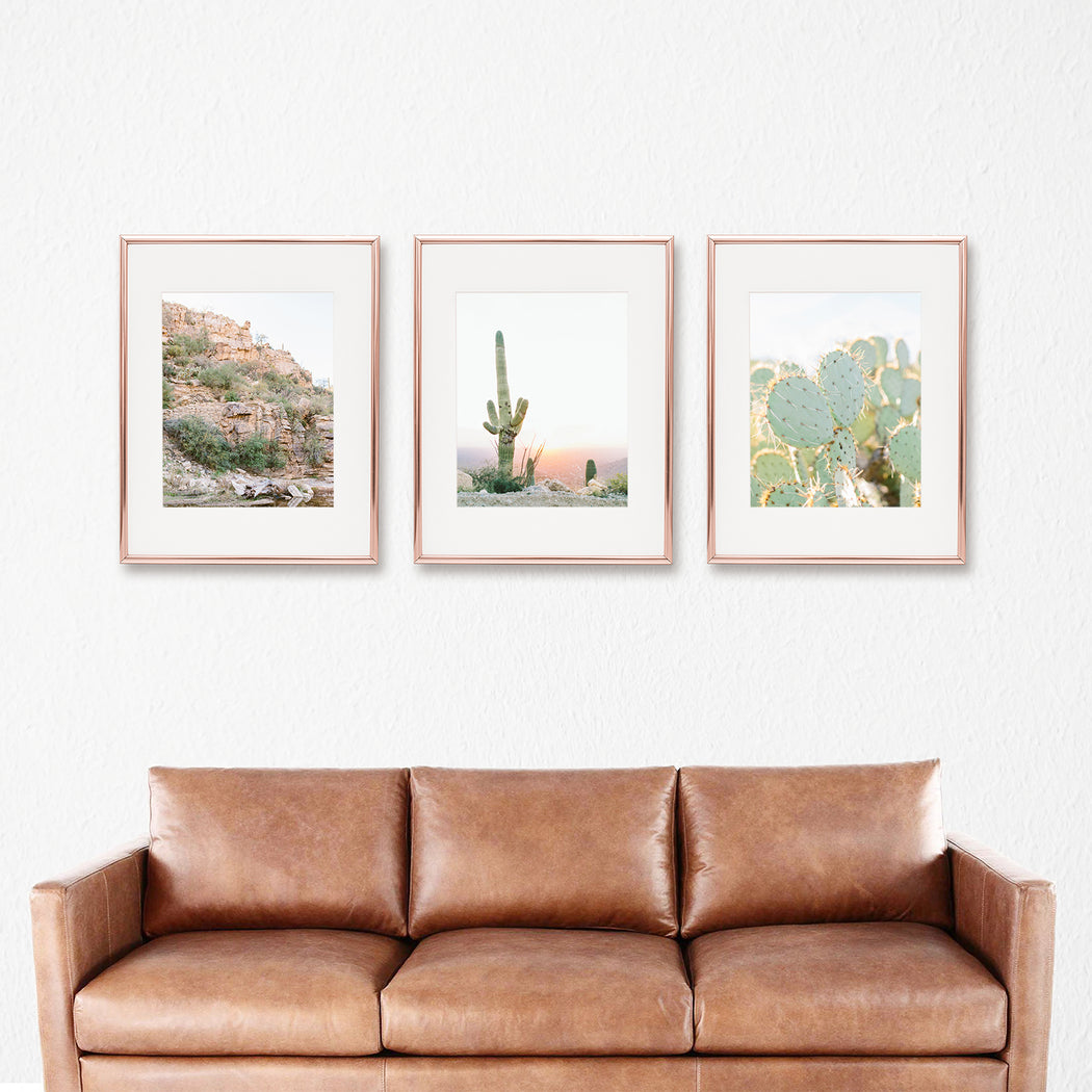 cactus botanical print set of 3