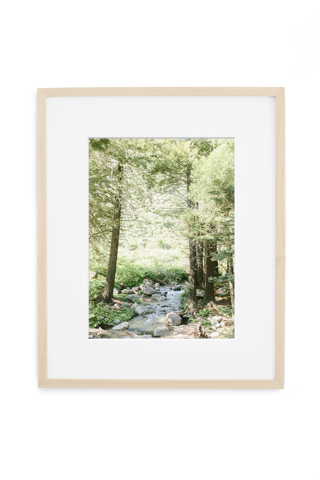 big sur forest stream print