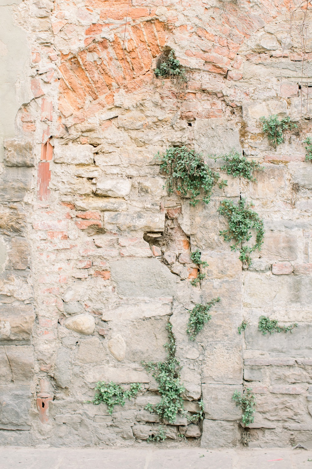 old wall in florence